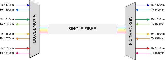 single fibre
